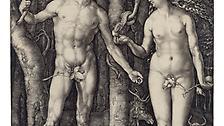 Waren die Stammeltern der Menschen dereinst allerdings noch unter sich, so sieht heute oft die ganze Welt zu, wenn Sexaffren Mnner ins Straucheln bringen.